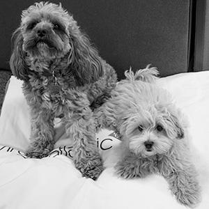 Hamish & Rupert